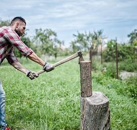 Bûcheron pour abattage d'arbres Restigne